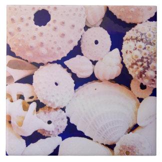 Azulejo Seashells