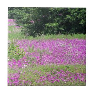 Azulejo Un campo de los wildflowers rosados de la