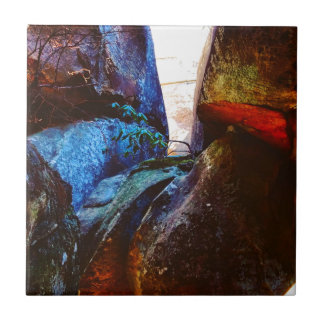 Azulejo Vida de la roca