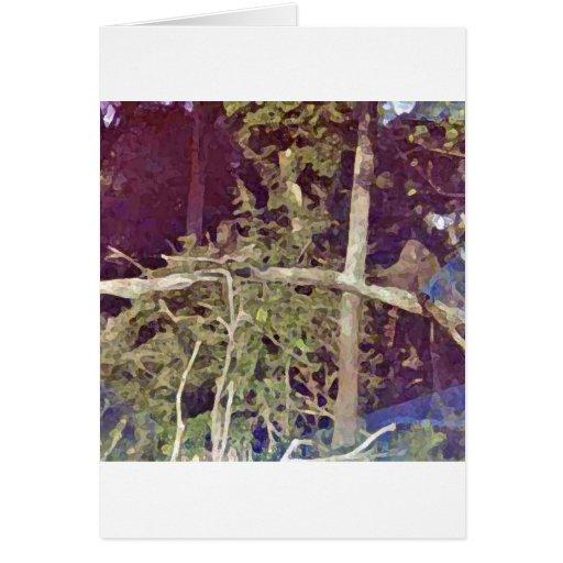 Babuinos en los árboles tarjetas
