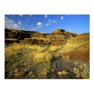 Badlands en el parque provincial del dinosaurio en postal