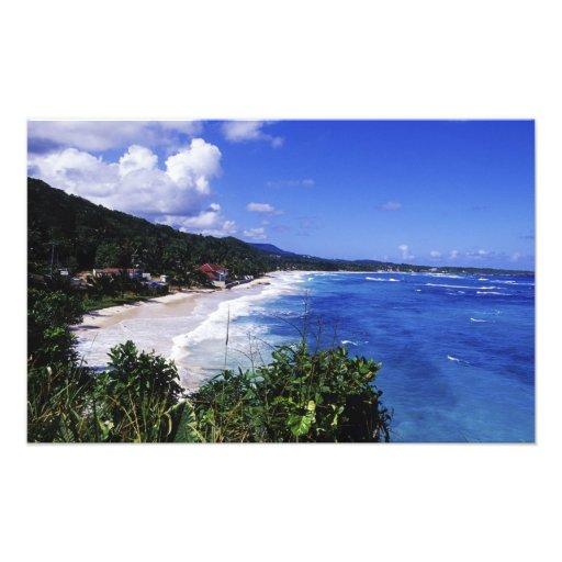 Bahía larga, puerto Antonio, Jamaica Impresion Fotografica