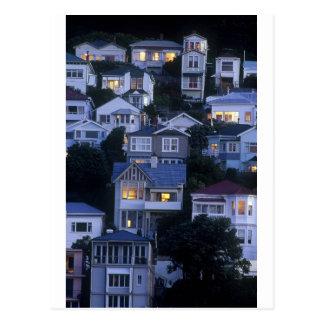 Bahía oriental Wellington de las casas con gradas Postal