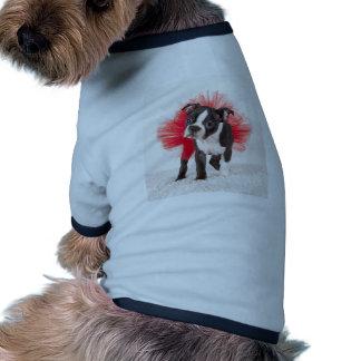 Bailarín de Boston Camisa De Mascota