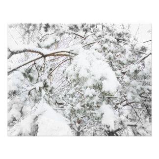 Bajo el peso de nieve foto