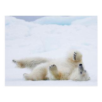 Balanceo del oso polar en la nieve, Noruega Postal