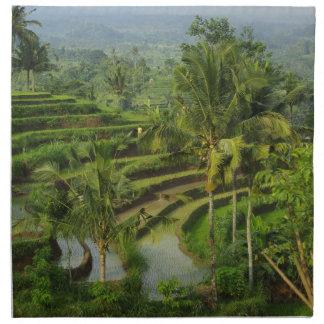 Bali - ricefields y palmas jovenes de la terraza servilleta de tela