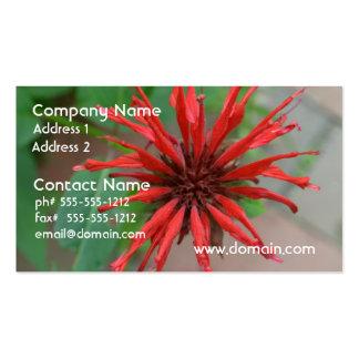 Bálsamo de abeja rojo bonito tarjetas de visita