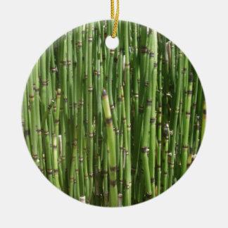 Bambú Ornamentos De Reyes