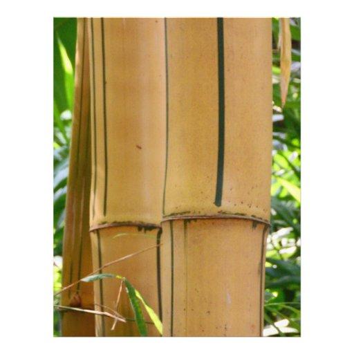 Bambú Tarjetón