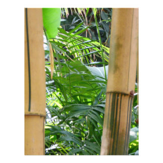 Bambú Tarjeta Publicitaria