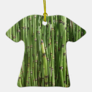 Bambú Ornamento Para Reyes Magos