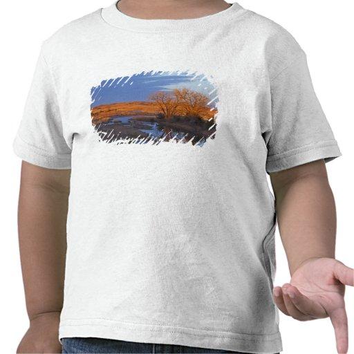 Bañado en luz de la puesta del sol el río del cála camiseta