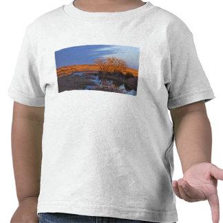Bañado en luz de la puesta del sol el río del cála camisetas