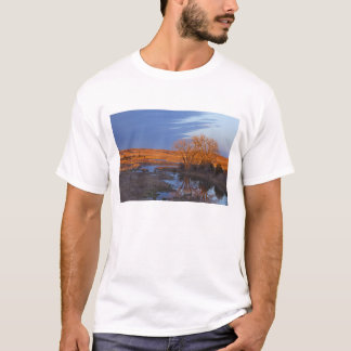 Bañado en luz de la puesta del sol el río del camiseta