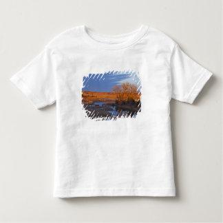 Bañado en luz de la puesta del sol el río del camiseta de niño