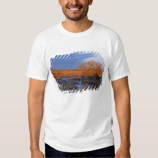 Bañado en luz de la puesta del sol el río del camisetas