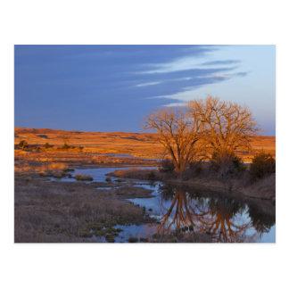 Bañado en luz de la puesta del sol el río del postal