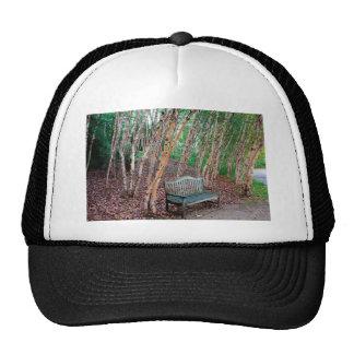 Banco de parque 1 gorra