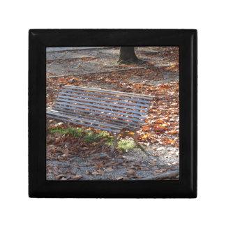 Banco en parque del otoño con las hojas muertas caja de regalo
