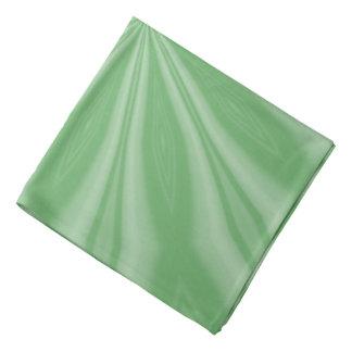 Bandana Rayas verdes