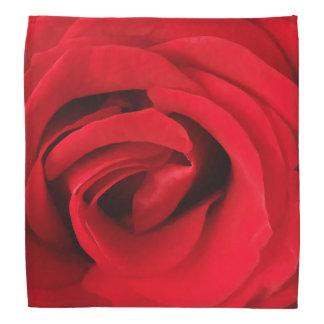 Bandana Rosa rojo
