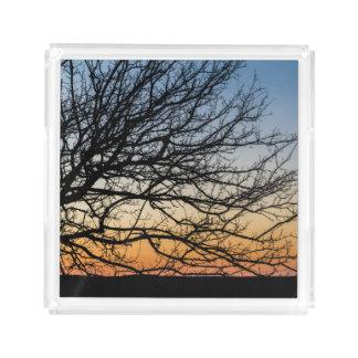 Bandeja Acrílica Cielo de la pendiente en invierno
