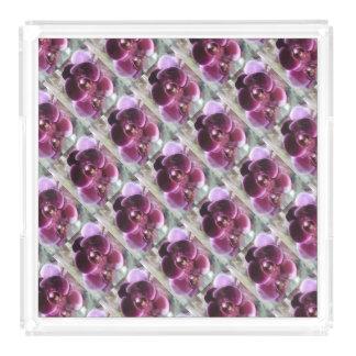 Bandeja Acrílica Orquídeas de polilla púrpuras oscuras