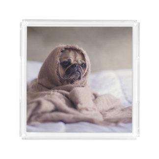 Bandeja Acrílica Perro de perrito del barro amasado que abraza en