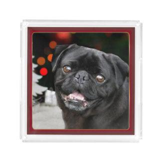 Bandeja de acrílico de la porción del perro del