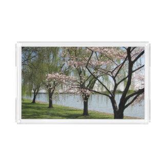 Bandeja de la porción de la flor de cerezo y del