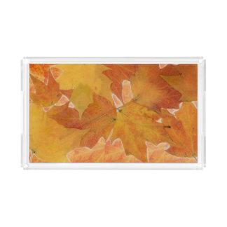 Bandeja del acrílico de la hoja del otoño