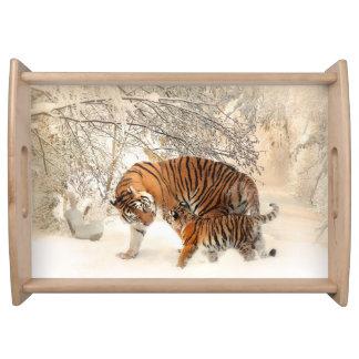 Bandeja Familia del tigre en invierno