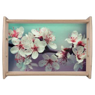 Bandeja Flor de cerezo rosada, Cherryblossom, Sakura