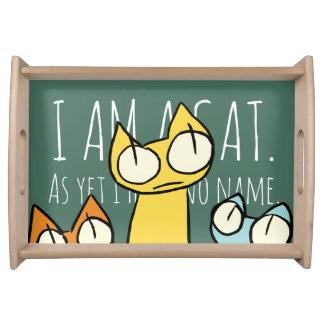 Bandeja Gatos coloridos el mirar fijamente