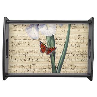 Bandeja música del iris y de la mariposa