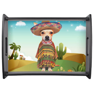 Bandeja Perro mexicano, chihuahua