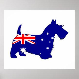 Bandera australiana - escocés Terrier Póster