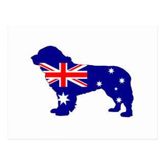Bandera australiana - perro de Terranova Postal