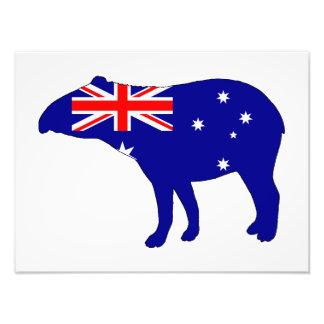 Bandera australiana - Tapir Foto