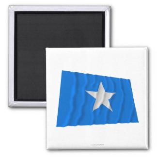Bandera azul de Bonnie/al oeste bandera de la repú Imán