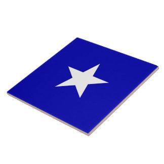 Bandera azul de Bonnie Azulejo Cuadrado Grande