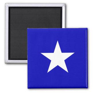 Bandera azul de Bonnie Imán Cuadrado