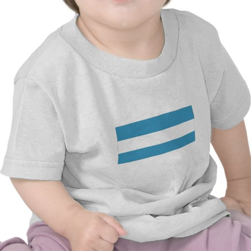 Bandera civil de la Argentina Camisetas