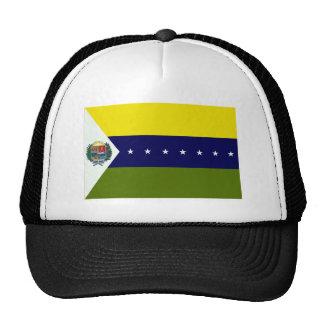 Bandera de Apure Gorros Bordados