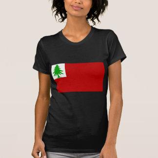 Bandera de Nueva Inglaterra Camisetas