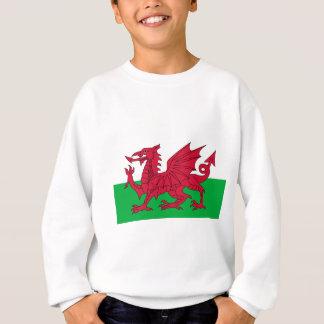 Bandera de País de Gales - el dragón rojo - Baner Sudadera