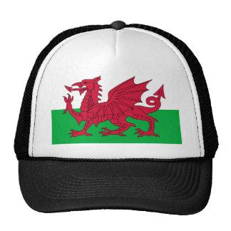 Bandera de País de Gales Gorra