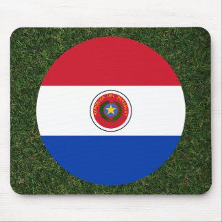 Bandera de Paraguay en hierba Alfombrilla De Ratón