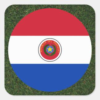 Bandera de Paraguay en hierba Pegatina Cuadrada